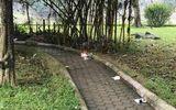 Tình tiết mới vụ thi thể người phụ nữ trẻ bán khỏa thân ở vườn hoa Hà Đông