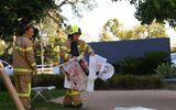 Australia: Bắt giữ nghi phạm gửi 38 bưu kiện chứa chất độc tới các cơ quan ngoại giao