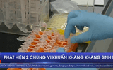 Phát hiện 2 chủng vi khuẩn kháng kháng sinh mới