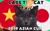 Tứ kết Việt Nam - Nhật Bản: Bất ngờ trước dự đoán đội chiến thắng của chú mèo tiên tri Cass