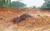 Hà Tĩnh: Bàng hoàng phát hiện quả bom nặng 2,5 tạ trong lúc đào đất