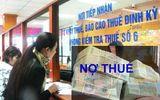 Hà Nội: Công ty CP Viptour - Togi dẫn đầu danh sách nợ thuế