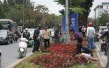 """Vụ nhiều người """"hôi"""" hoa trang trí sau thượng đỉnh Mỹ - Triều: Đề nghị trích xuất camera làm rõ"""