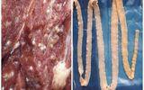 Sán lợn có bị tiêu diệt khi thức ăn được đun nấu sôi?