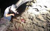 Hưng Yên: Cháu bé 7 tuổi bị đàn chó tấn công đã tử vong