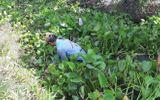 Tiền Giang: Nổ súng trấn áp trường gà, bắt 31 con bạc