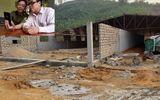 Sơn Dương - Tuyên Quang: Chính quyền