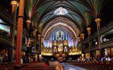 Hỏa hoạn tại nhà thờ Đức Bà Paris: Đồng cảm, sẻ chia và tiếc nuối...!