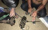 Quảng Nam: Dân vây bắt, đánh trọng thương 2 đối tượng mang súng điện đi trộm chó