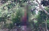 Chồng treo cổ chết ở bãi đất trống, vợ ôm xác gào khóc thảm thiết