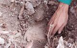 Công an Cà Mau: Chưa từng nghe báo cáo thông tin hơn 300 xác thai nhi bỏ lẫn trong rác thải