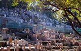 Hong Kong: Đất để chôn cất người chết đắt đỏ hơn cho người sống
