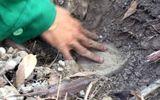 """Vụ """"hơn 300 xác thai nhi ở nhà máy rác"""": Giám đốc Bệnh viện Sản- Nhi Cà Mau lên tiếng"""