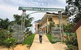 Vụ thầy giáo bị tố làm nữ sinh lớp 8 có thai ở Lào Cai: Anh trai nạn nhân nói gì về số tiền bồi thường