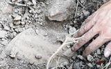 Vụ hơn 300 xác thai nhi bỏ theo rác: Kiến nghị giám định mẫu vật bên trong các hũ sành