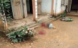 Phú Thọ: Con trai say rượu về nhà gây sự bị bố đánh tử vong