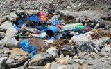Đang dọn dẹp rác trên đỉnh Everest bất ngờ phát hiện 4 thi thể