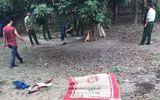 Khởi tố vụ án bác rể sát hại cháu 7 tuổi, chôn thi thể dưới đống gạch ở Hà Nội