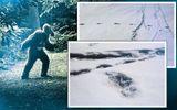 Quân đội Ấn Độ tuyên bố tìm thấy dấu chân của quái vật huyền thoại Yeti ở Himalaya