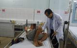 Ngộ độc cá nóc, 4 người trong gia đình nhập viện trong tình trạng nguy kịch