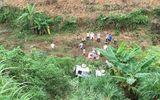 Lào Cai: Ô tô bất ngờ lao xuống vực, 2 vợ chồng thương vong