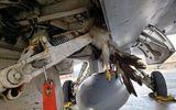 Máy bay chiến đấu thế hệ 5 của Mỹ đâm phải chim, thiệt hại hàng triệu USD