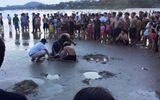 Tin trong nước - Bình Thuận: Rủ nhau đi tắm biển, 2 học sinh lớp 9 bị nước cuốn tử vong