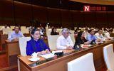 Hôm nay (24/5), Quốc hội dự kiến tiếp tục thảo luận về luật Quản lý thuế và luật Kiến trúc