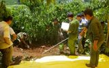 Tin trong nước - Ám ảnh hiện trường vụ 3 bà cháu bị sát hại, chôn xác trong vườn cà phê