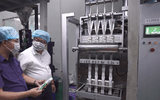 Công ty Macca Nutrition Việt Nam chú trọng phát triển vùng nguyên liệu tại nhiều địa phương