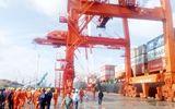 Vinalines ra công văn hỏa tốc công bố thông tin bất thường về việc tiếp nhận cảng Quy Nhơn