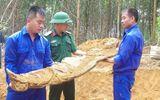 Đào đất làm vườn, phát hiện 2 bộ hài cốt còn nguyên vẹn tại Thừa Thiên-Huế