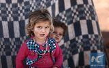 Tình hình Syria mới nhất ngày 31/5: UNICEF kêu gọi bảo vệ trẻ em ở chiến trường Tây Bắc