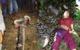 Trăn khổng lồ tấn công, siết chết người phụ nữ ở Indonesia