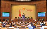 Ngày 11/6, đại biểu Quốc hội biểu quyết thông qua 2 nghị quyết, cho ý kiến 2 dự án Luật