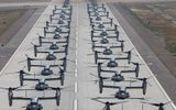 43 trực thăng quân sự Mỹ phô diễn sức mạnh trong cuộc tập trận 'Voi đi bộ'