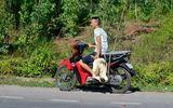 """Công an vào cuộc điều tra vụ dân xúm vào """"hôi vịt"""" trên xe tải bị lật ở Quảng Bình"""