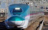Con ốc sên khiến 26 chuyến tàu bị hủy, 12.000 hành khách chậm chuyến