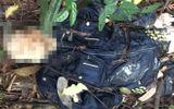 Lâm Đồng: Hoảng hốt phát hiện thi thể người đàn ông đang phân hủy nặng trên đèo Bảo Lộc
