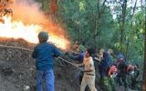 """Cháy rừng bùng phát trở lại, Nghệ An """"chi viện"""" nhiều xe chữa cháy giúp Hà Tĩnh dập lửa"""