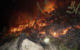3 ngày cháy rừng lịch sử tại Hà Tĩnh: 65ha rừng bị thiêu rụi, 70% diện tích không thể phục hồi