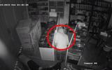 """""""Siêu trộm"""" dỡ mái tôn, đột nhập cửa hàng """"cuỗm"""" 69 điện thoại trong 17 phút sa lưới"""