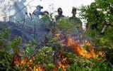 """Đà Nẵng: 3 giờ chiến đấu với """"giặc lửa"""", khống chế thành công đám cháy rừng tự nhiên"""
