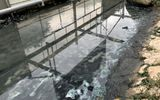 Sau thí điểm công nghệ của Nhật Bản lớp bùn sông Tô Lịch giảm đáng kể