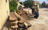 """Truy đuổi xe chở gỗ lậu, kiểm lâm viên phải nhập viện vì bị """"lâm tặc"""" dùng đá đập vào đầu"""