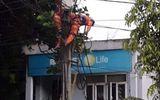 Chưa xác định được nguyên nhân công nhân điện lực tử vong trên cột điện ở Hòa Bình