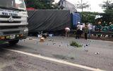 Tin trong nước - Tin tức tai nạn giao thông mới nhất hôm nay 24/7/2019: Xe tải tông vào đoàn người, 5 người tử vong