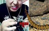 Vlogger tử vong khi đang livestream cảnh ăn côn trùng độc
