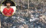 Lời khai bất ngờ của nam thanh niên 3 lần đốt rừng ở Nghệ An