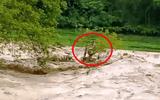 Lũ quét ở Thanh Hóa: Đang giải cứu người mắc kẹt trên ngọn cây giữa dòng lũ